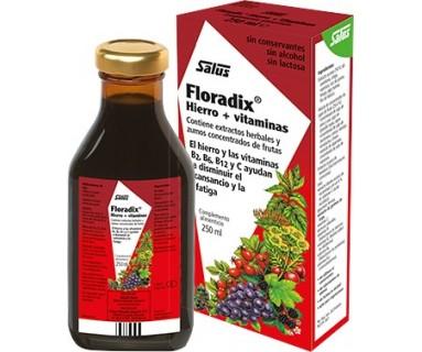 Floradix 500 ml Salus